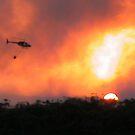 JetRanger Bushfire by PrecisionHeli