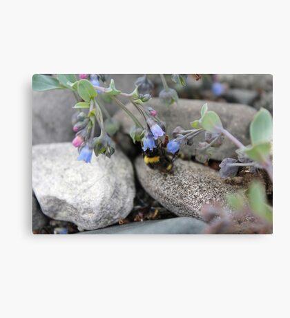 Nesten blomster og bier Canvas Print