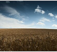 A late summer day by Markus Wanninger