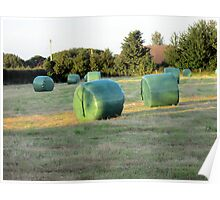 all baled up  Poster