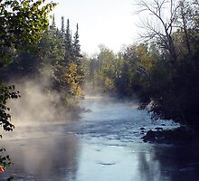 Morning Mist by Brenda Hagenson