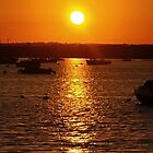 Sunsetting - on your iPhone case. by naturelover