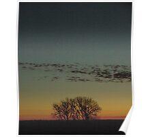South Dakota Sunrise Poster