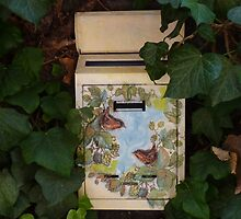 Letterbox in Bolsena by LindyLouMac