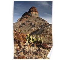Cerro Castellan at Sunset Poster