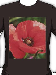 Field Poppy T-Shirt