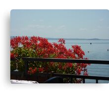 Geraniums Lake View - Trattoria del Moro Canvas Print