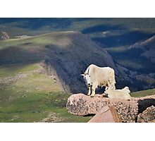 Chilling on a Cliff Photographic Print