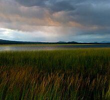 summer storm... by Allan  Erickson