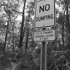 No dumping! by Adam Isaacson