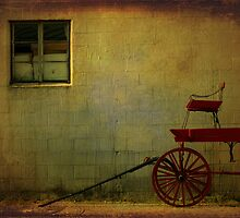 Little Red Wagon by Michael  Herrfurth