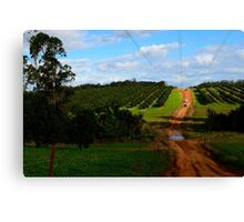 4wd fruit trees  Canvas Print