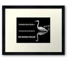 FEATURED BANNER NO MORE COLOR Framed Print