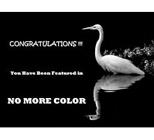 FEATURED BANNER NO MORE COLOR Photographic Print