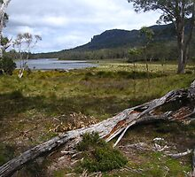 Mt Oakleigh and Lake Ayr by Langana