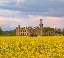 Ducket's Grove by Michael Walsh
