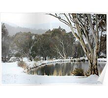Thredbo Village, NSW Poster