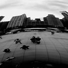 Chicago by Tierney Paley-Powell