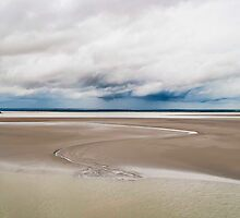The sandy shores of Normandy by Steven  Van Gucht