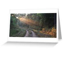 Beautyful morning in jungle Greeting Card