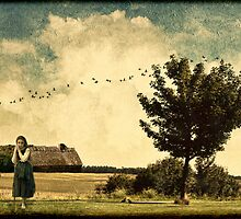 Hazy Days of Summer by © Kira Bodensted