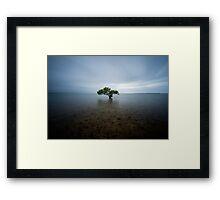 """""""I Stand Alone"""" ∞ King Island, QLD - Australia Framed Print"""