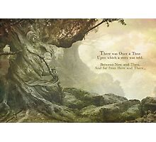 Once Upon a Whistling Tree Photographic Print