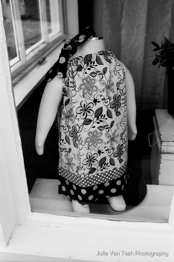 Through the window by Julie Van Tosh Photography