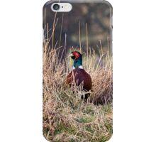 Pheasant iPhone Case iPhone Case/Skin