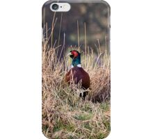 Pheasant iPhone Case iPhone Case/Skin