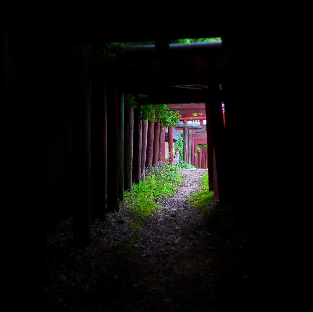 Old Path Red Gate by Sam Ryan