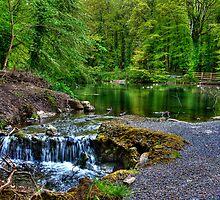River Moy @ Belleek Castle by Nicola Lee