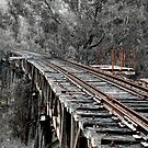 Bridge to Nowhere by rossco