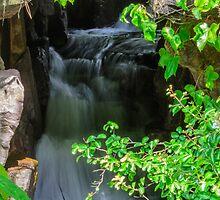 Waterfall by Mark Fendrick