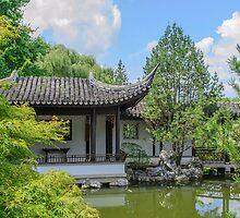 NY Chinese Scholar's Garden by Mark Fendrick
