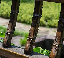 Wood Fence by Mark Fendrick