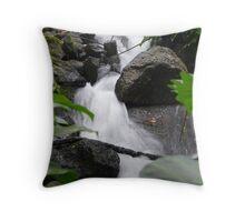 Waterfall - EDEN Throw Pillow