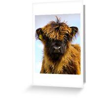 Wee Hairy Coo Greeting Card