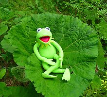 Butterbur Journal Large Nature Frog Kermit by HQPhotos
