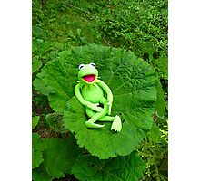 Butterbur Journal Large Nature Frog Kermit Photographic Print