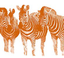 Line of Lines (Burning Orange) by Joe Stallard