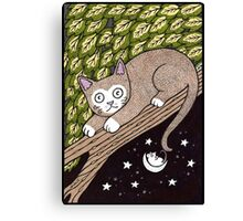 The Mouse on the Moon Canvas Print