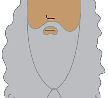 Dumbledore's Beard by freebooksy