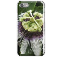 Passion Flower iPhone/iPod Case iPhone Case/Skin
