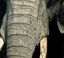 braveheart... elephant? Sticker