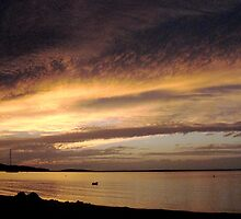 Noyac Bay Golden Sunset by Rick Gold
