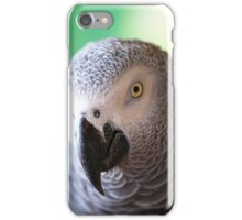 African Grey Smize iPhone Case/Skin