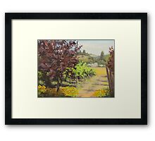 Melrose Morning Framed Print