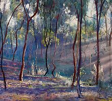 Rays Across the Gully by Lynda Robinson