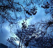 Lite Blu Momento by Adam Stylz